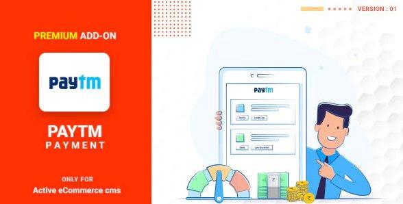 Active eCommerce Paytm add-on v1.1